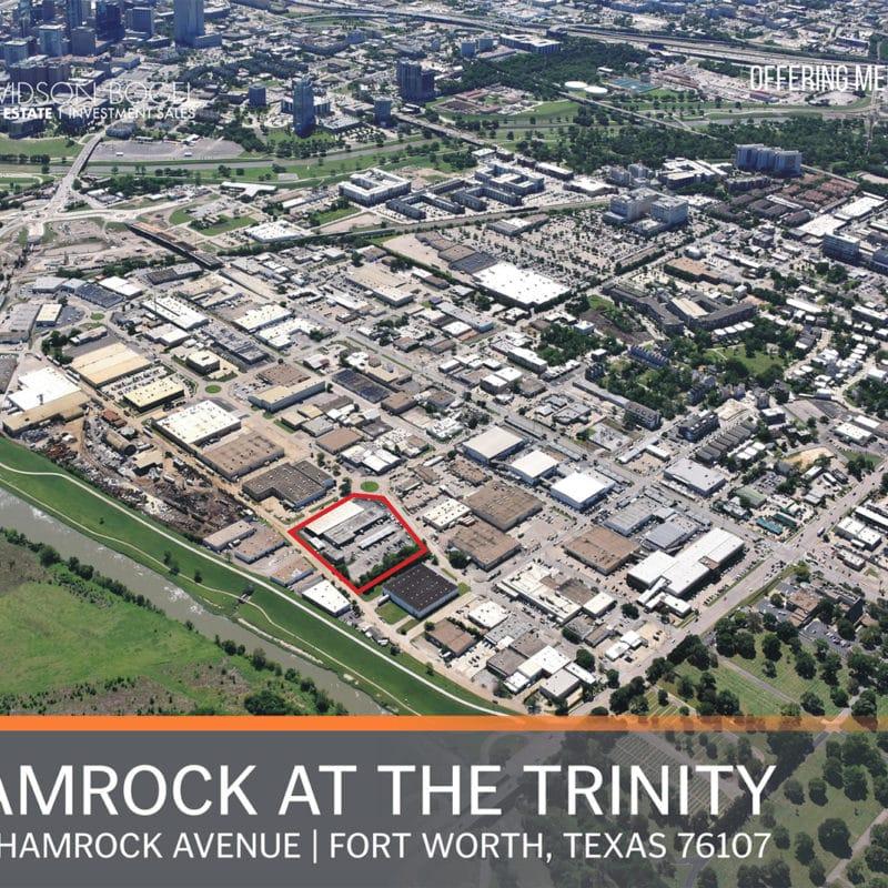 Shamrock at the Trinity</a>